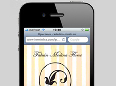 Fabian Medina Flores Mobile